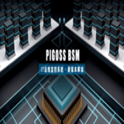 PIGOSS BSM  新版本发布,资产管理更上新台阶